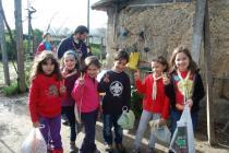 Acanatal 2012